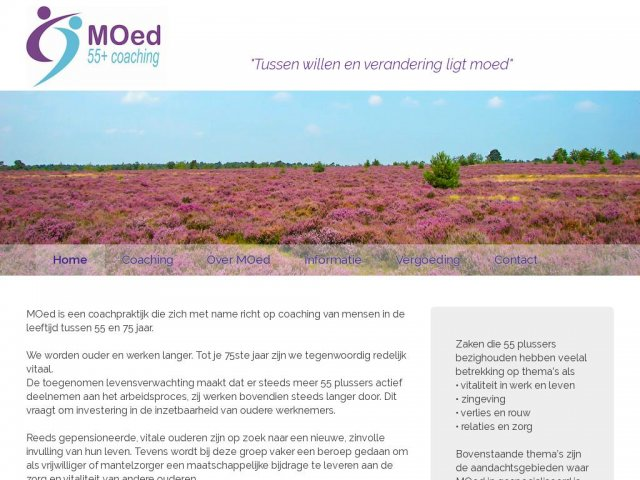 MOed Coaching